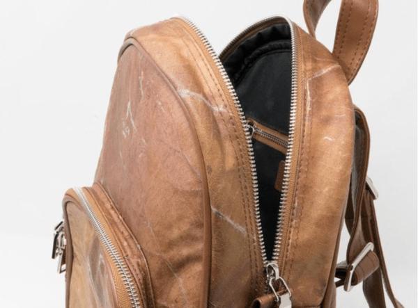 backpackbr